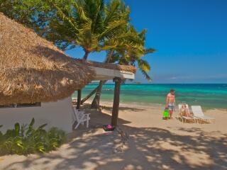 Beach Bure