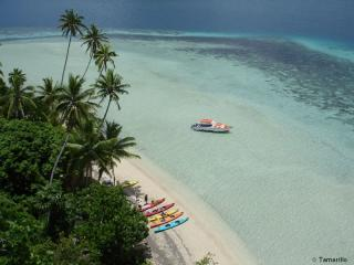 Kadavu Island Accommodation View