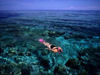 Yasawa Island Resort Snorkelling